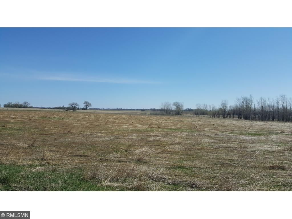 Image of  for Sale near Olivia, Minnesota, in Renville County: 108 acres