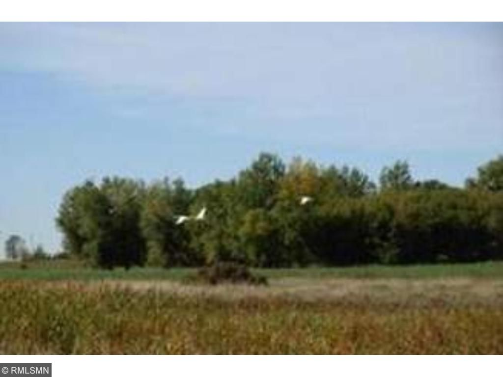Image of  for Sale near Austin, Minnesota, in Freeborn County: 17.26 acres