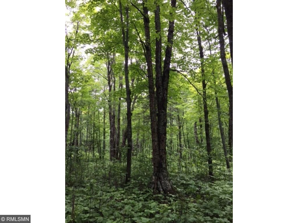 Image of  for Sale near Port Wing, Wisconsin, in Bayfield County: 36.09 acres
