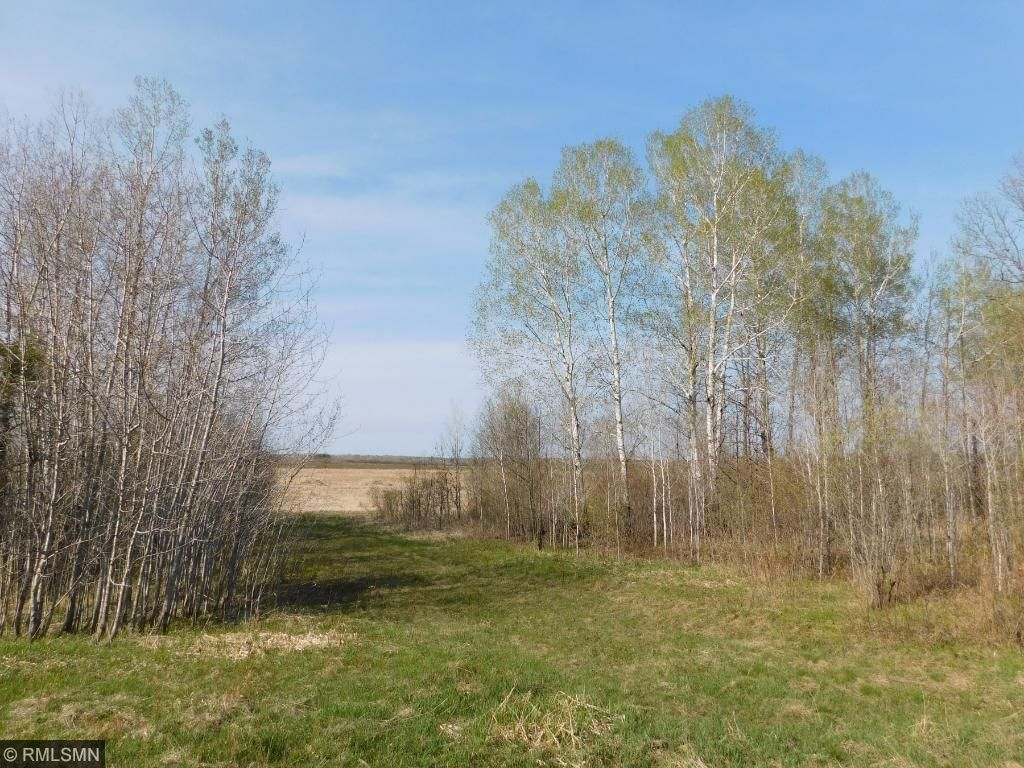 Image of  for Sale near Kettle River, Minnesota, in Carlton County: 40 acres