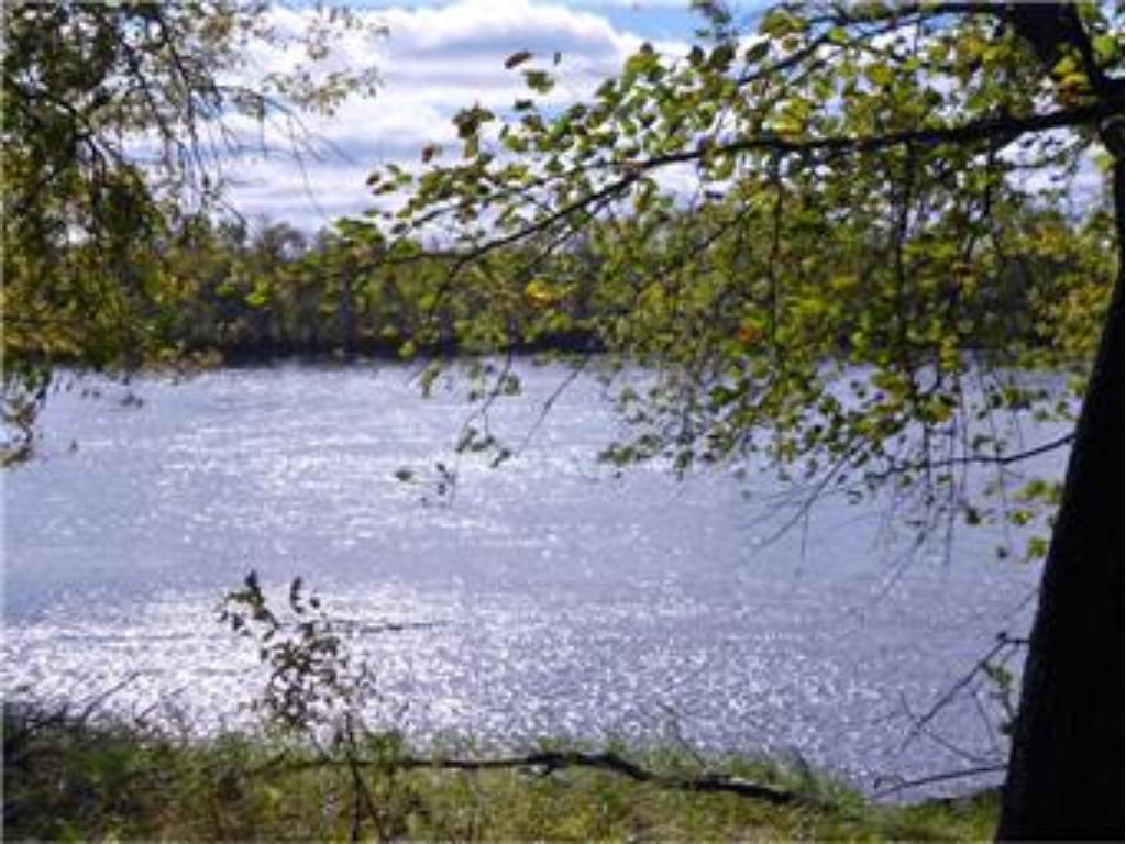 Xxx (l2 B1) 106th Street SE Clear Lake, MN 55319
