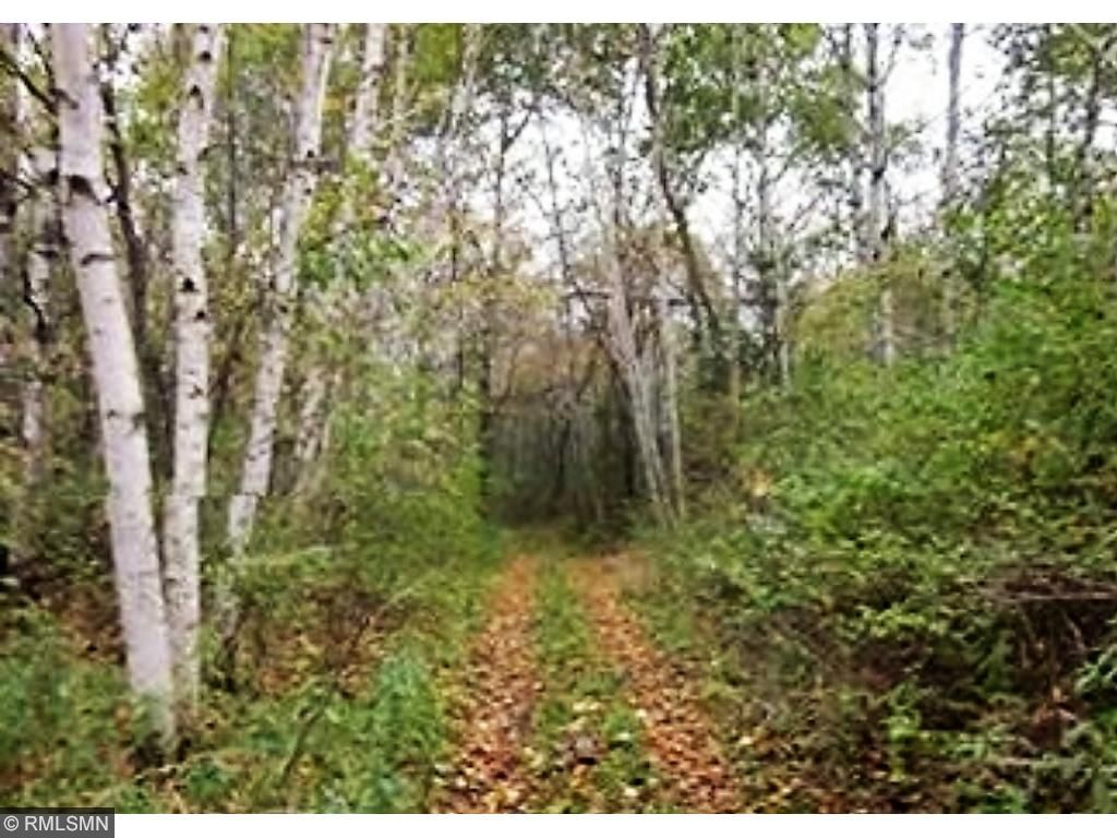 primary photo for Xxx 360th Street, Shafer Twp, MN 55084, US