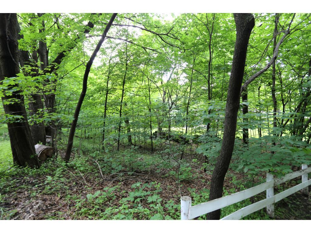 6250 Murray Hill Road, one of homes for sale in Chanhassen