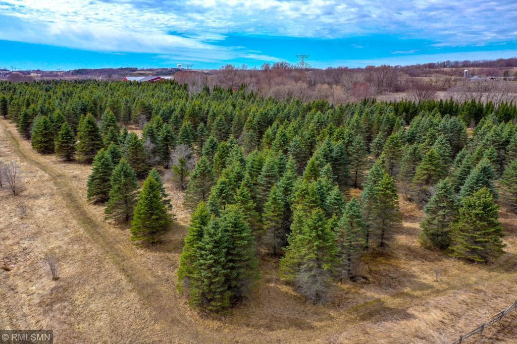 1550 Majestic Pines Trail Afton, MN 55001