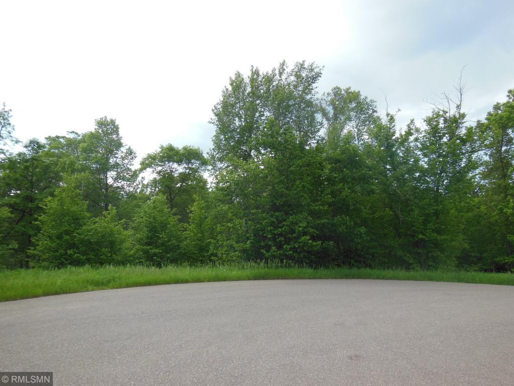 Xxx Free Bird Circle, one of homes for sale in Nisswa