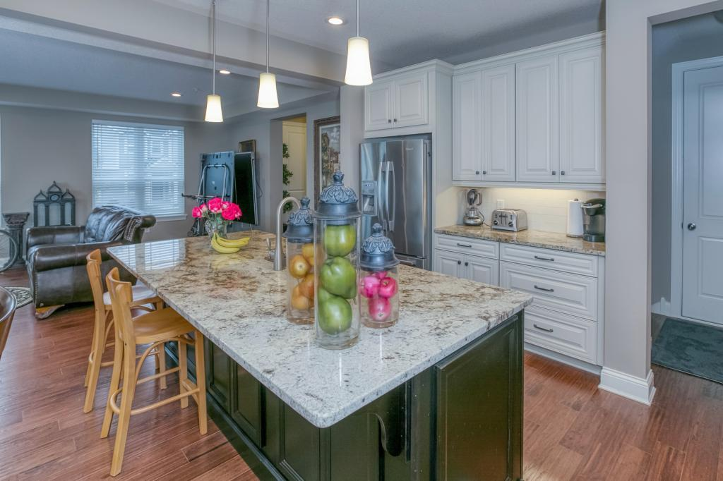 18122 Glassfern Lane, Lakeville in Dakota County, MN 55044 Home for Sale
