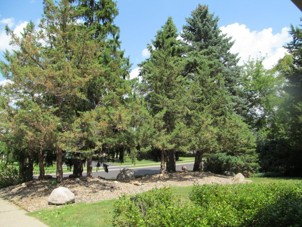 9905 Bluff Road, one of homes for sale in Eden Prairie