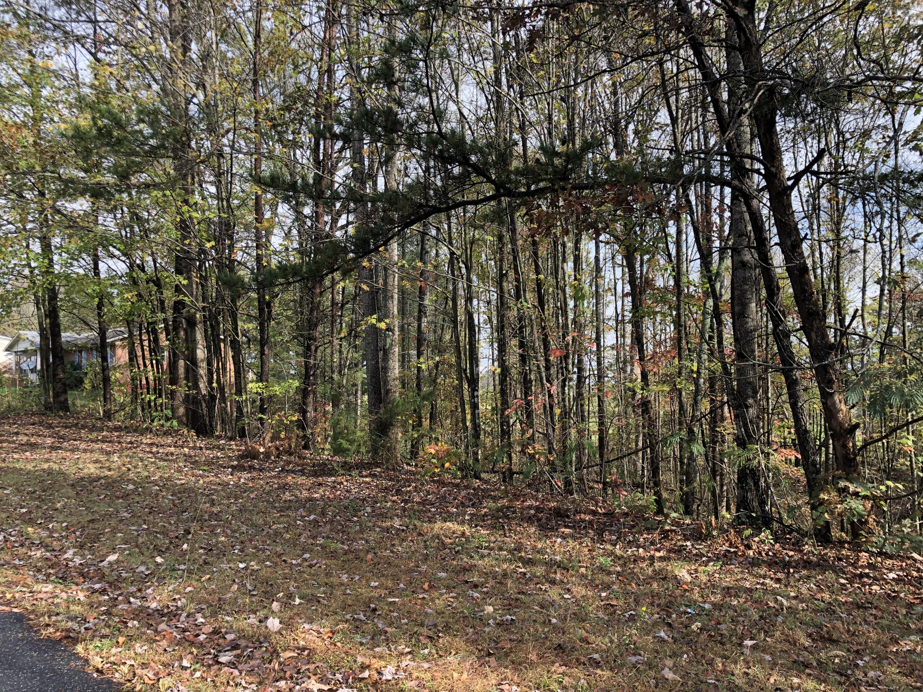 primary photo for Lot 8 Indian TRL, Henry, VA 24102, US