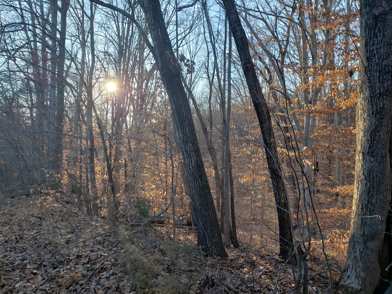 Property in Smith Mountain Lake, Virginia: Residential
