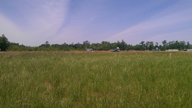 83.28 acres Weldon, NC