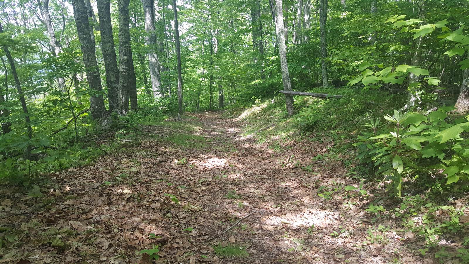 Photo of Lot 37 Trickle Creek Road  Waynesville  NC