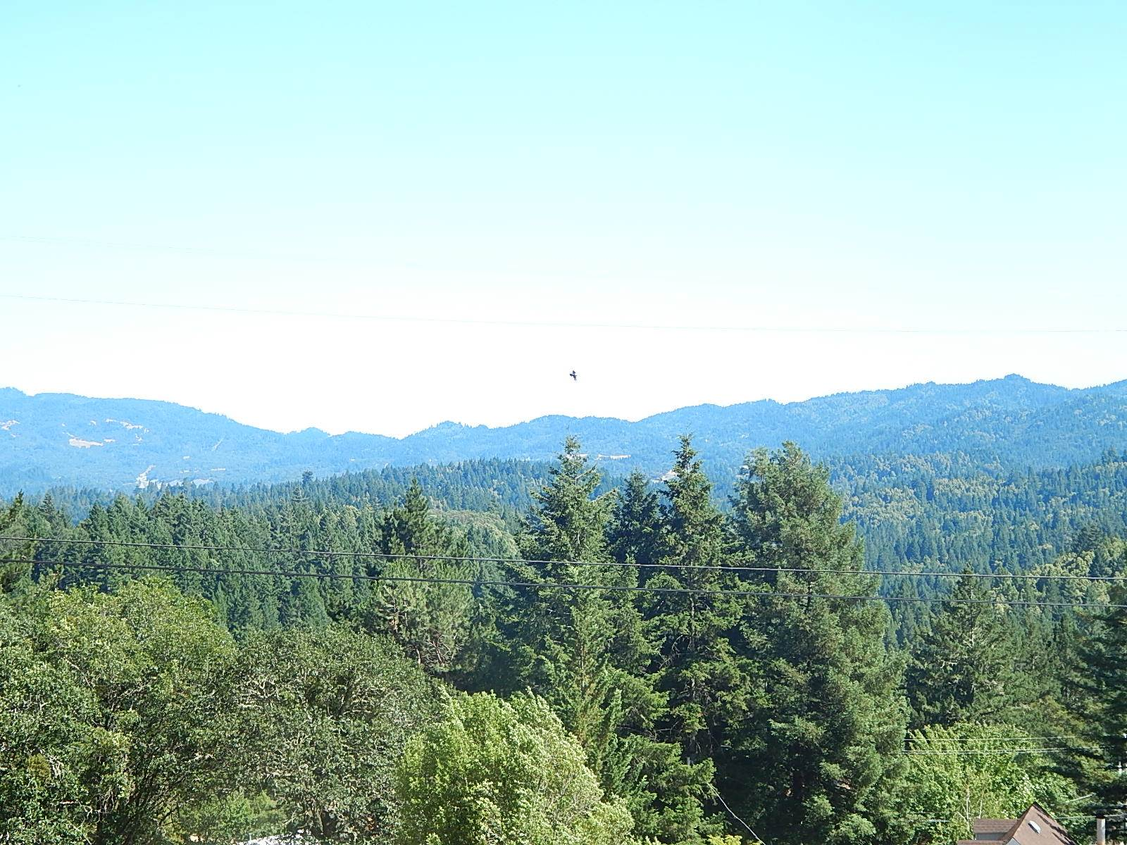 Photo of 27381 Coyote Place  Willits  CA