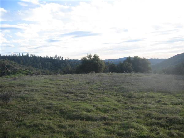 13 acres by Placerville, California for sale