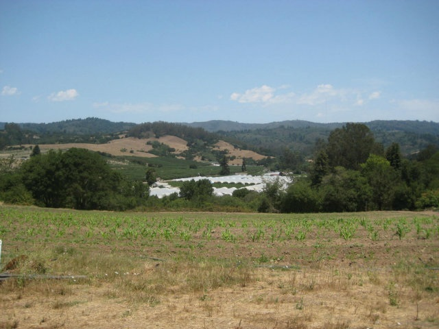 10.72 acres in Watsonville, California