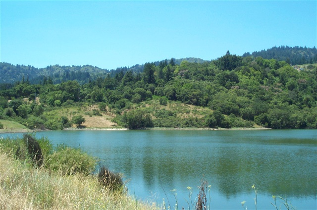 4 acres in Los Gatos, California