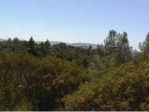 5.2 acres in Murphys, California