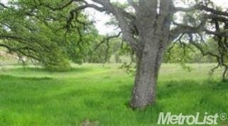 5.92 acres in Plymouth, California