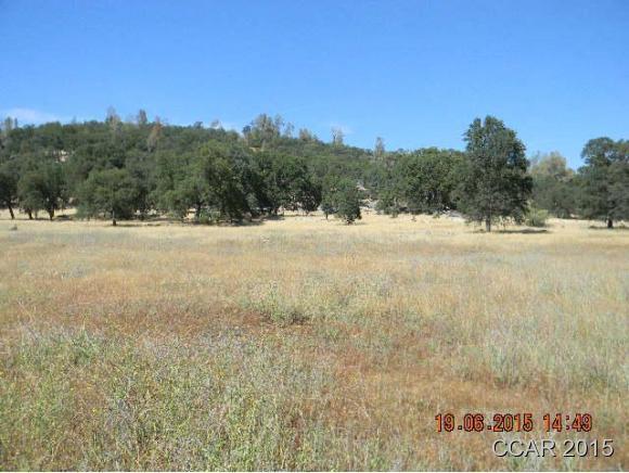 45 acres Murphys, CA