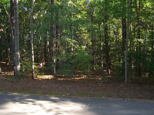 Land for Sale, ListingId:29588142, location: 4011 Deer Track Trail Sanford 27332