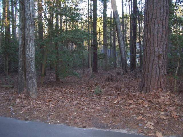 Real Estate for Sale, ListingId: 29588147, Sanford,NC27332