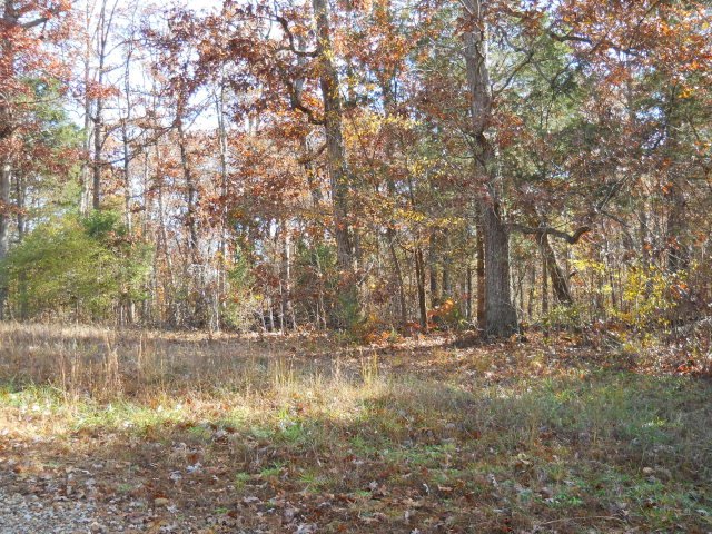 Real Estate for Sale, ListingId: 29596687, Goldston,NC27252