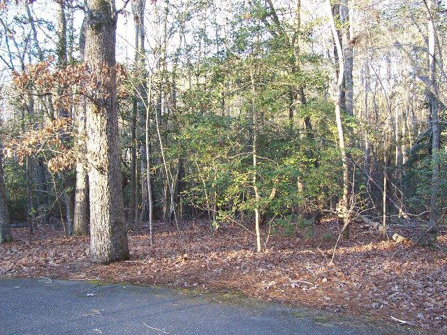Real Estate for Sale, ListingId: 29588166, Sanford,NC27332