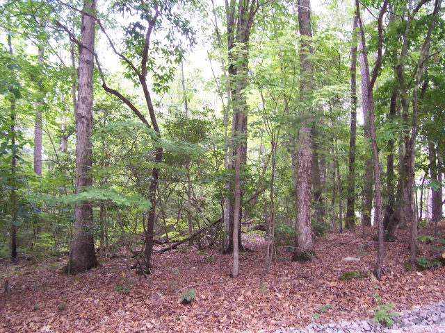 Land for Sale, ListingId:29884766, location: 2065 Falling Stream Sanford 27332
