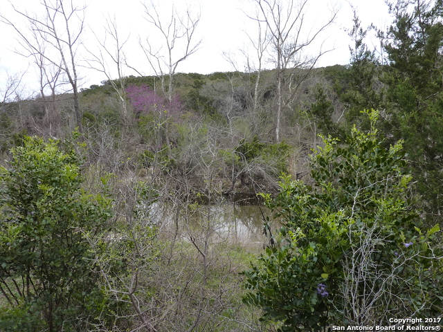 17032 Scenic Loop Road Helotes, TX 78023