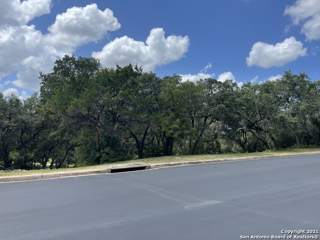 56 Eton Green Circle, one of homes for sale in San Antonio - The Dominion