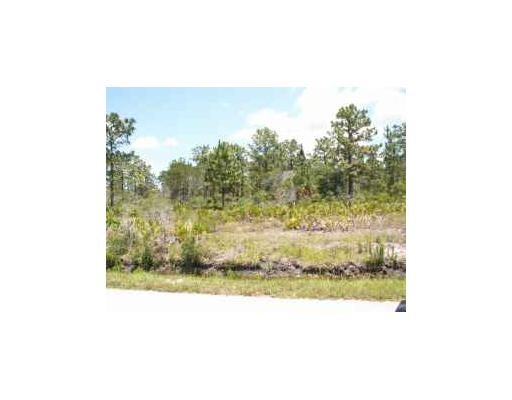 20 acres in Moore Haven, Florida