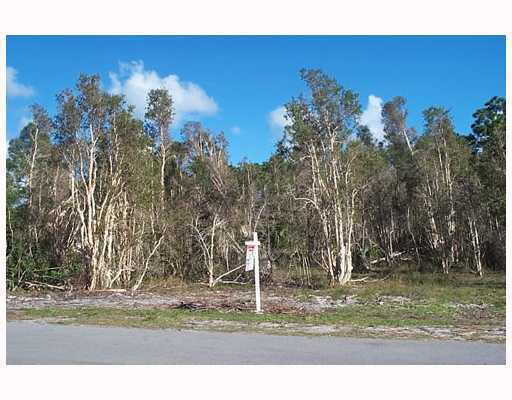 5 acres in Loxahatchee, Florida