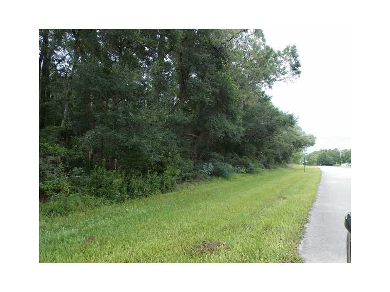 91.2 acres Perry, FL