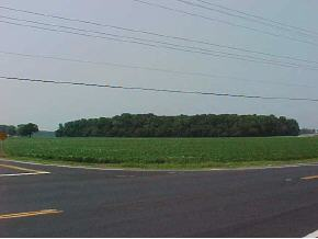 40 acres Clarksville, DE
