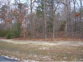 Real Estate for Sale, ListingId: 29509559, Milton,DE19968