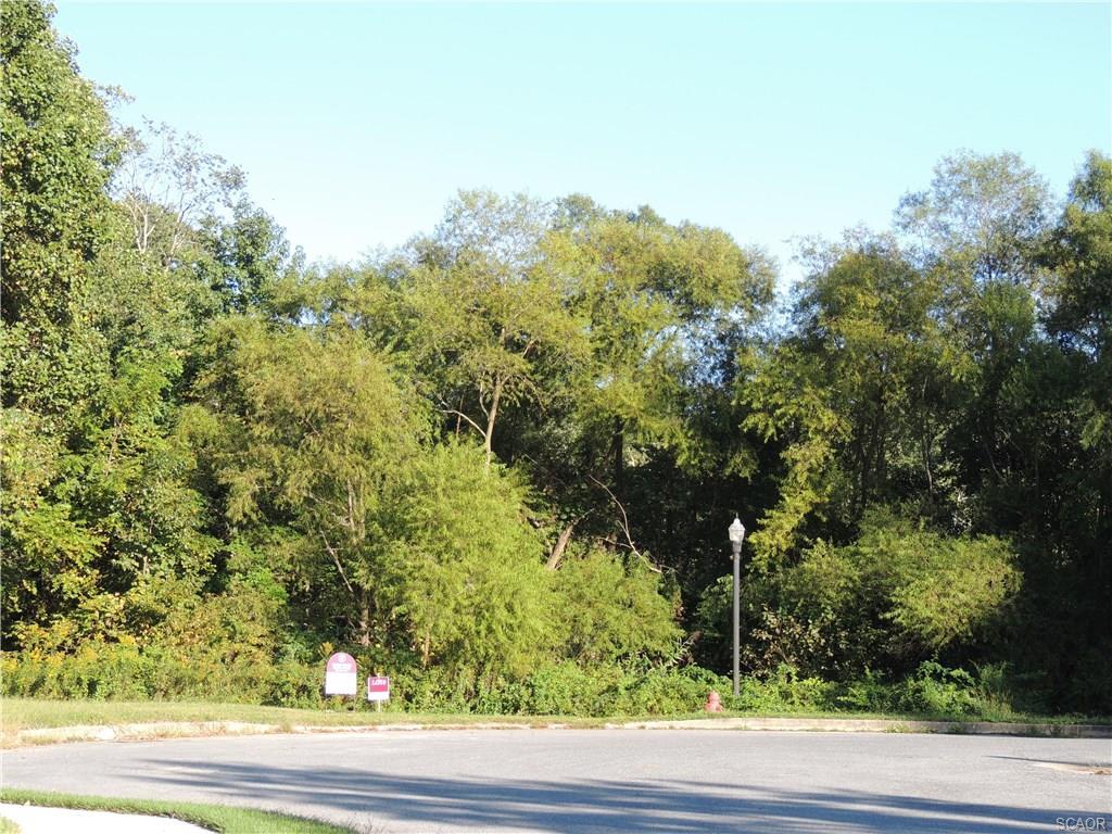 Real Estate for Sale, ListingId: 22095885, Milton,DE19968