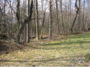 Real Estate for Sale, ListingId: 22926653, Millsboro,DE19966