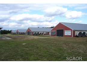5890 Harmony Road #, Preston, MD 21655