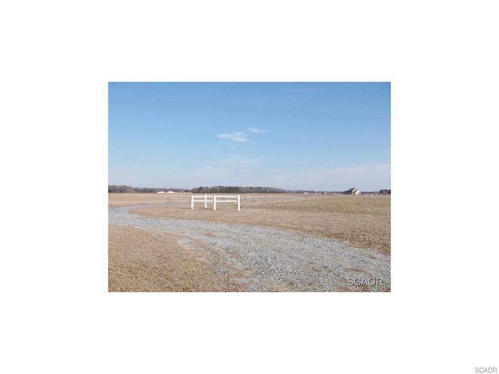 Real Estate for Sale, ListingId: 26724576, Georgetown,DE19947