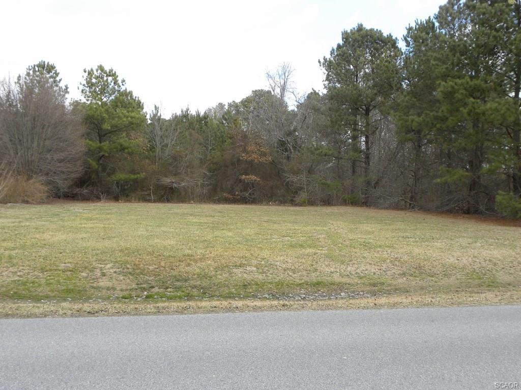 Real Estate for Sale, ListingId: 27617772, Ocean View,DE19970