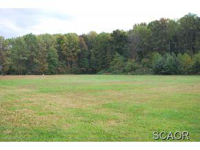 Real Estate for Sale, ListingId: 30371234, Dagsboro,DE19939