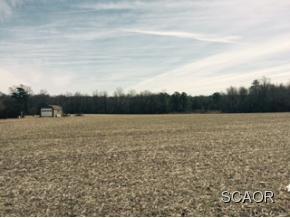Real Estate for Sale, ListingId: 32513197, Milton,DE19968