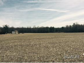 Real Estate for Sale, ListingId: 32513198, Milton,DE19968