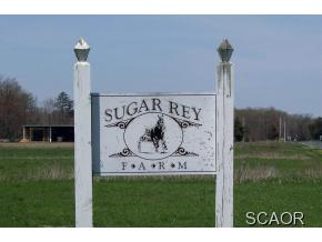 59.06 acres Bridgeville, DE