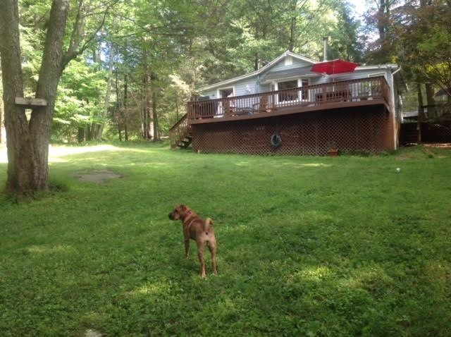 Real Estate for Sale, ListingId: 31768740, Smallwood,NY12778