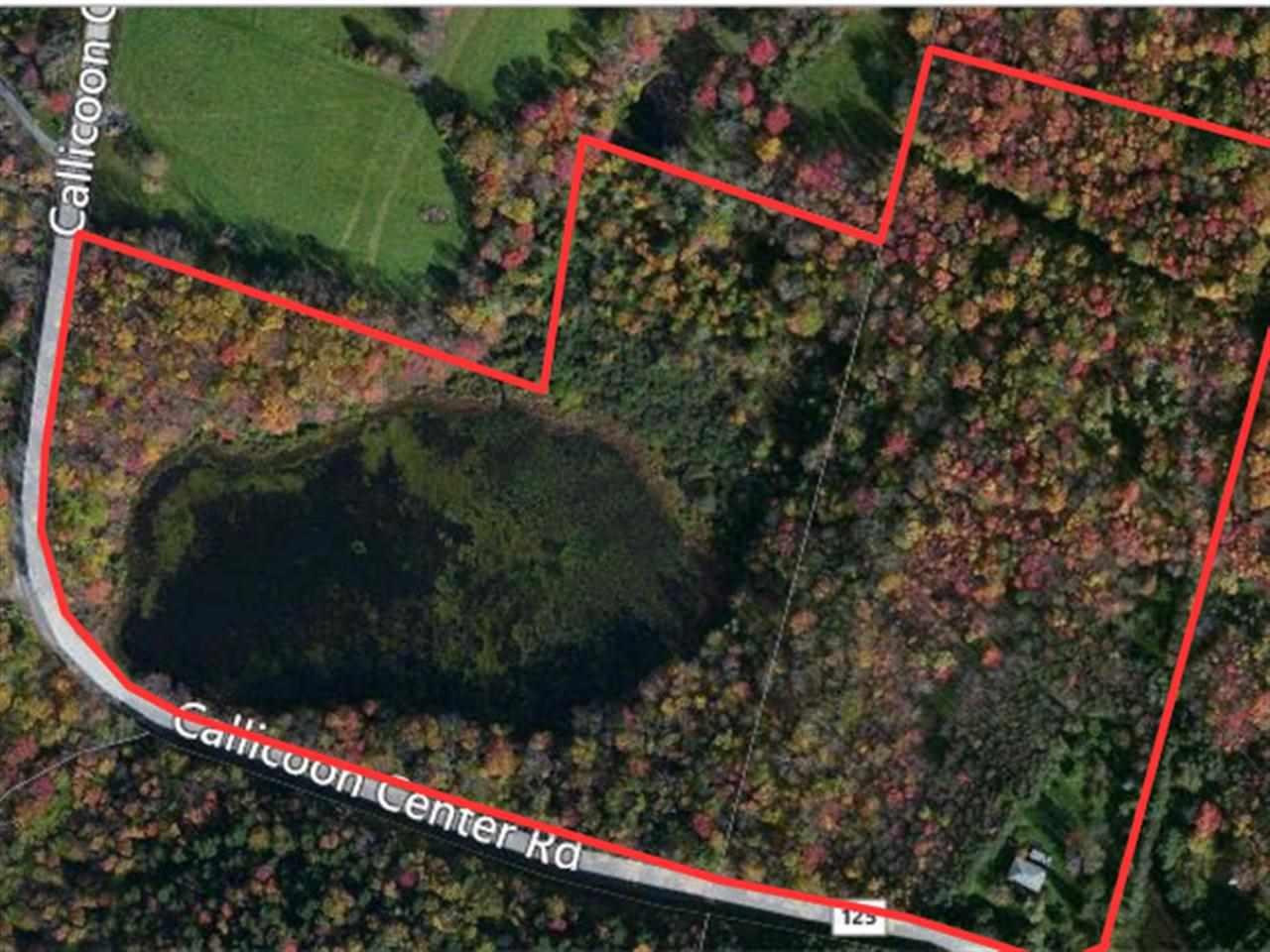 Real Estate for Sale, ListingId: 31767627, Jeffersonville,NY12748