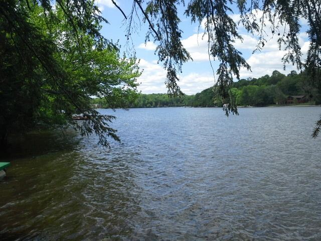 Real Estate for Sale, ListingId: 31768768, White Lake,NY12786