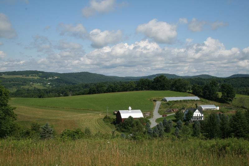 Real Estate for Sale, ListingId: 31769155, Jeffersonville,NY12748