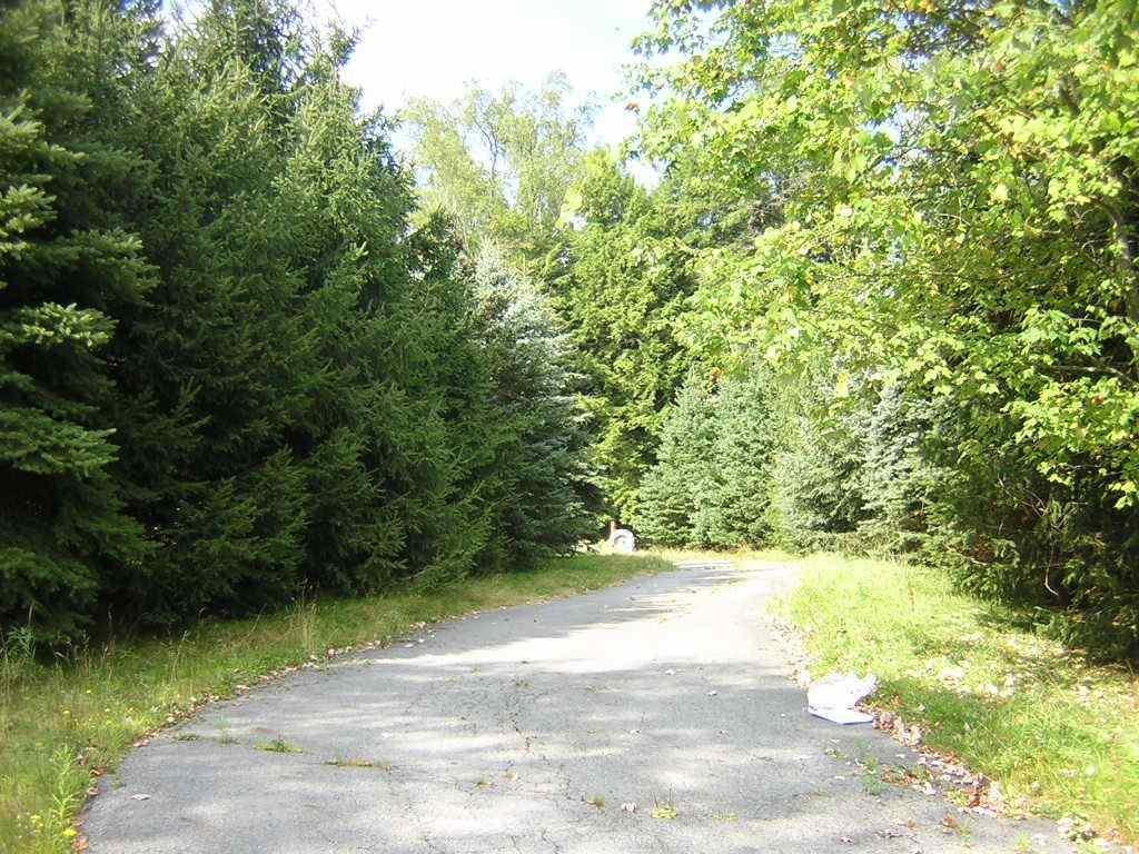 Image of Acreage for Sale near Monticello, New York, in Sullivan county: 23.00 acres