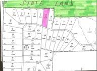 Real Estate for Sale, ListingId: 33621707, Barryville,NY12719