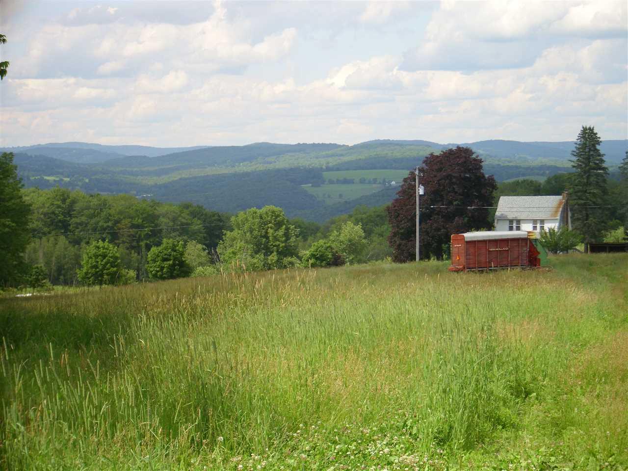 Real Estate for Sale, ListingId: 34066545, Cochecton,NY12726